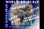 2013 International Rhino